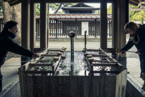 Santuario Meiji #7_Meiji Temple #7