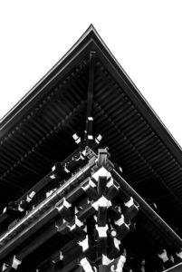 Santuario Meiji #11_Meiji Temple #11