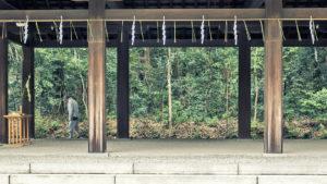 Santuario Meiji #5_Meiji Temple #5