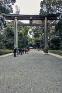 Santuario Meiji #1_Meiji Temple #1