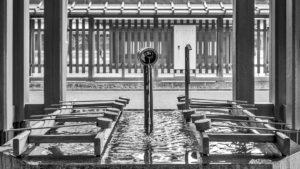 Santuario Meiji #9_Meiji Temple #9
